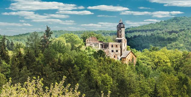 Widok na zamek skryty wżród porośniętych lasem wzgórz